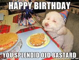 happy birthday you splendid old stoned birthday dog