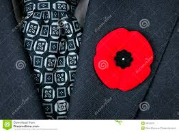 remembrance day poppy on suit royalty free stock photos image