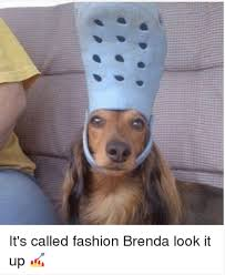 Brenda Memes - it s called fashion brenda look it up it s called fashion look