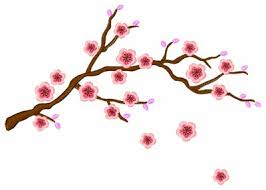 cherry blossom embroidery designs machine embroidery designs at