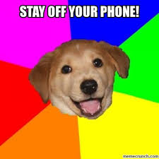 Dog Phone Meme - off your phone