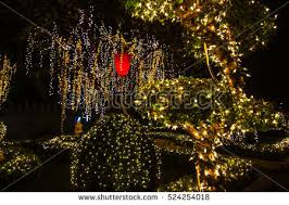 christmas tree lighting 2018 decorative outdoor string lights hanging on stock photo 100 legal