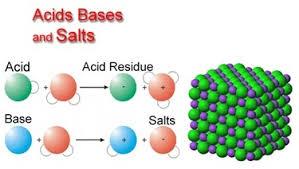 acids bases and salts gohomeworkhelp com