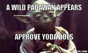 Yoda Meme Maker - d db dbcbc68d yoda approves meme generator a wild padawan appears