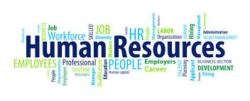 Sample Resumes For Hr Professionals by Sample Human Resources Resumes