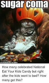 Grumpy Cat Coma Meme - 25 best memes about sugar sugar memes