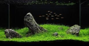 japanese garden aquarium decorations home inspirations