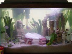 Betta Fish Decorations Creative Aquarium Decorations Google Search For My Axolotl