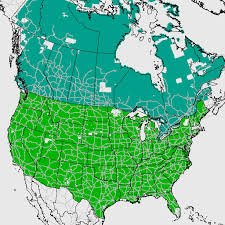 map for usa and canada topoquest topographic maps and satellite maps