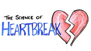 quotes about life going on after a break up the science of heartbreak youtube