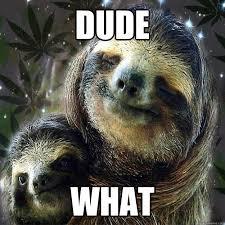 Sloth Asthma Meme - creepy sloth memes
