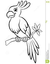 coloring pages birds little cute parrot stock vector image