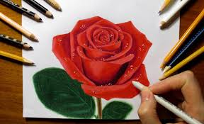 drawing a rose with colored pencils youtube