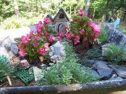 flower gardening 101 outdoor fairy garden plants for colorado warm weather does