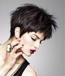 womans short hairstyle for thick brown hair trendy short dark hairstyles