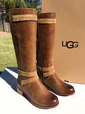 ugg s darcie boot ugg australia buckle knee high boots for ebay