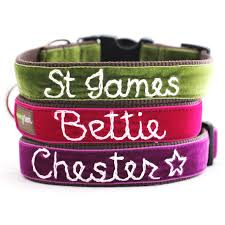 personalized velvet collar 14 colors to choose from