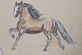 mustang horse drawing horses wisdom of the ages