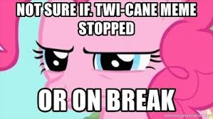 Pinkie Pie Meme - not sure if twi cane meme stopped or on break pinkie pie stare
