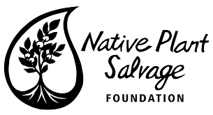 native plants natural areas notebook monthly plant walks u2014 native plant salvage foundation