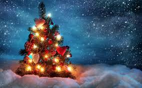 tree light in snow hd wallpaper led lights