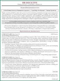 senior hr manager resume sample 10 resume of hr executive template applicationsformat info