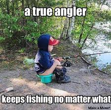 Pike Meme - ideal 72 best pike images on pinterest testing testing