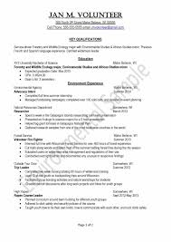 Event Planner Sample Resume Collection Of Solutions Youth Advisor Sample Resume With