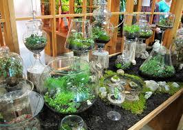kitchen gardening ideas garden landscaping garden ideas with glass pots plants for
