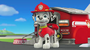 meet marshall paw patrol video clip