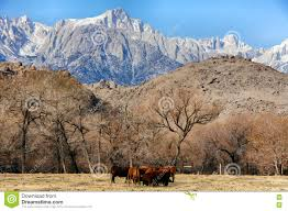 Sierra Nevada Mountains Map Nevada State Map Large Detailed Tourist Map Of Nevada With Cities
