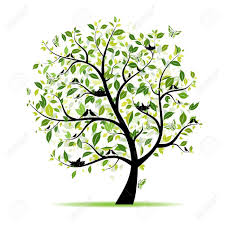spring tree green with birds for your design royalty free cliparts