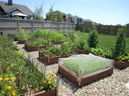 Front Yard Vegetable Garden Ideas Front Yard Vegetable Garden Ideas Front Yard Vegetable Month