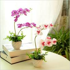 free shipping flowers hot selling free shipping phalaenopsis real touch flower with