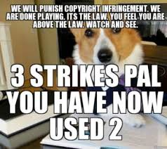 Dog Lawyer Meme - funny dog meme best collection of this is fine dog memes