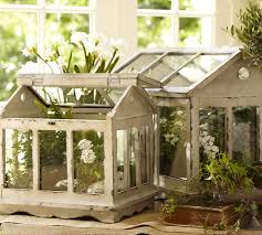 a breath of fresh air indoor terrarium gardening how to miller