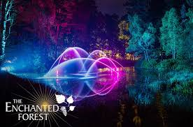 enchanted forest of light tickets the enchanted forest tickets pitlochry itison