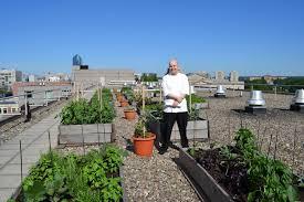 Urban Gardening Philadelphia - eating your way through philadelphia whisk quill