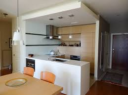 Contemporary Design Kitchen by Modern Kitchen Accessories Pictures U0026 Ideas From Hgtv Hgtv