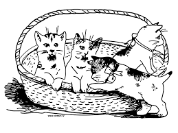 12 images of cat in basket coloring page kitten coloring pages