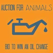 asta bid bid to win a car wash at our silent auction this saturday