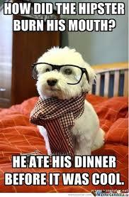 Hipster Cat Meme - because hipster cat is too mainstream by dafug meme center