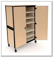 Plastic Cabinets Shelves Interesting Storage Cabinets On Wheels Storage Cabinets