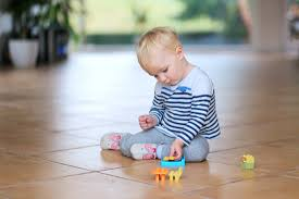 Professional Laminate Floor Cleaning Wood And Laminate Floor Cleaning Spring Hill Carpet Cleaning