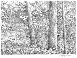 landscape pencil drawings series