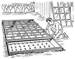 serre horticole en verre serre u2014 wikipédia