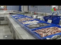 chambre froide alger prix algérie réhabilitation de la poissonnerie du port de pêche d alger