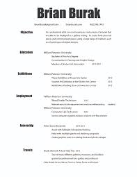 Resume For Artist Sample Resume For Art Internship Professional Resumes Sample Online
