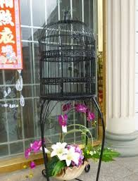2018 european ornamental wrought iron cage parrot starling landing