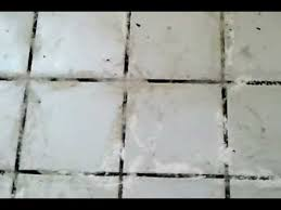 grout cleaning with oxy